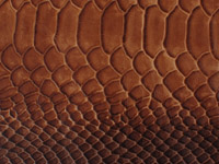 Brown Snake Pattern (A-119)