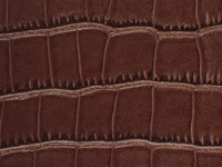 Brown Crocodile Pattern (A-134)
