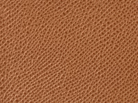 Tan Palm Pattern (A-56)