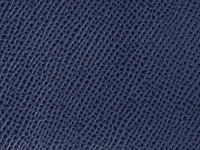 Blue Palm Pattern (A-57)