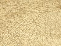 Gold Lamb Skin (C-12)