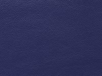 Blue Lamb Skin (C-5)