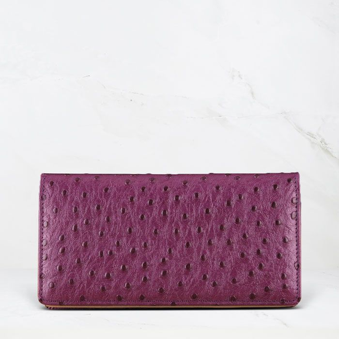 Holster Case with Card Pocket